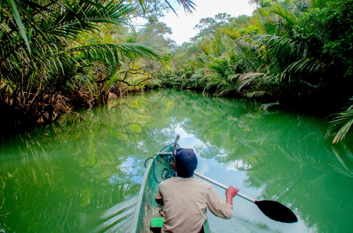 Mengenal Kembali Taman Nasional Ujung Kulon yang Resmi Dibuka untuk Wisata