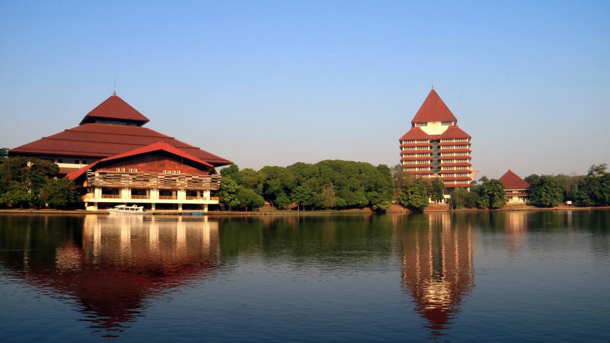 Sejarah Kampus UI, Rahim Perguruan-Perguruan Tinggi di Indonesia