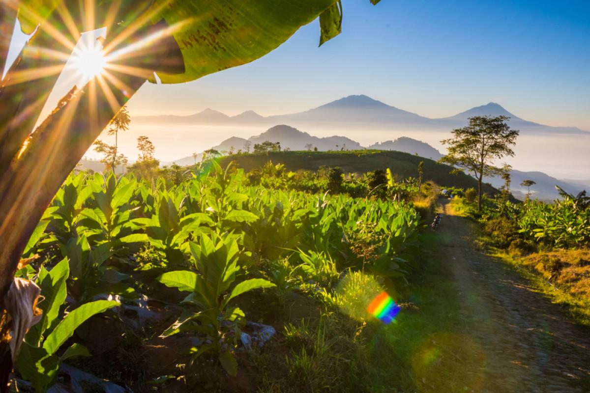 Ketika Desa Wisata Berperan untuk Menjaga Konservasi Alam