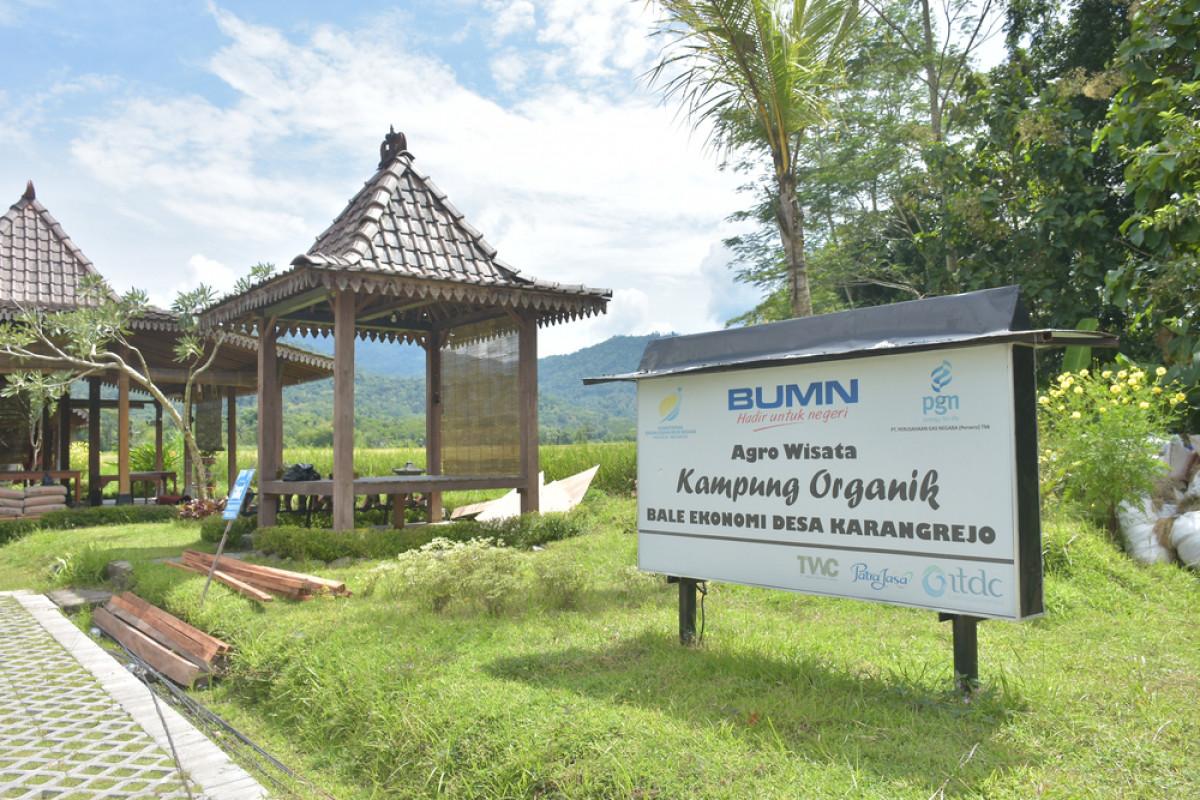Aktivitas Wisata di Desa Karangrejo Magelang, dari Menanam Padi hingga Keliling Naik VW