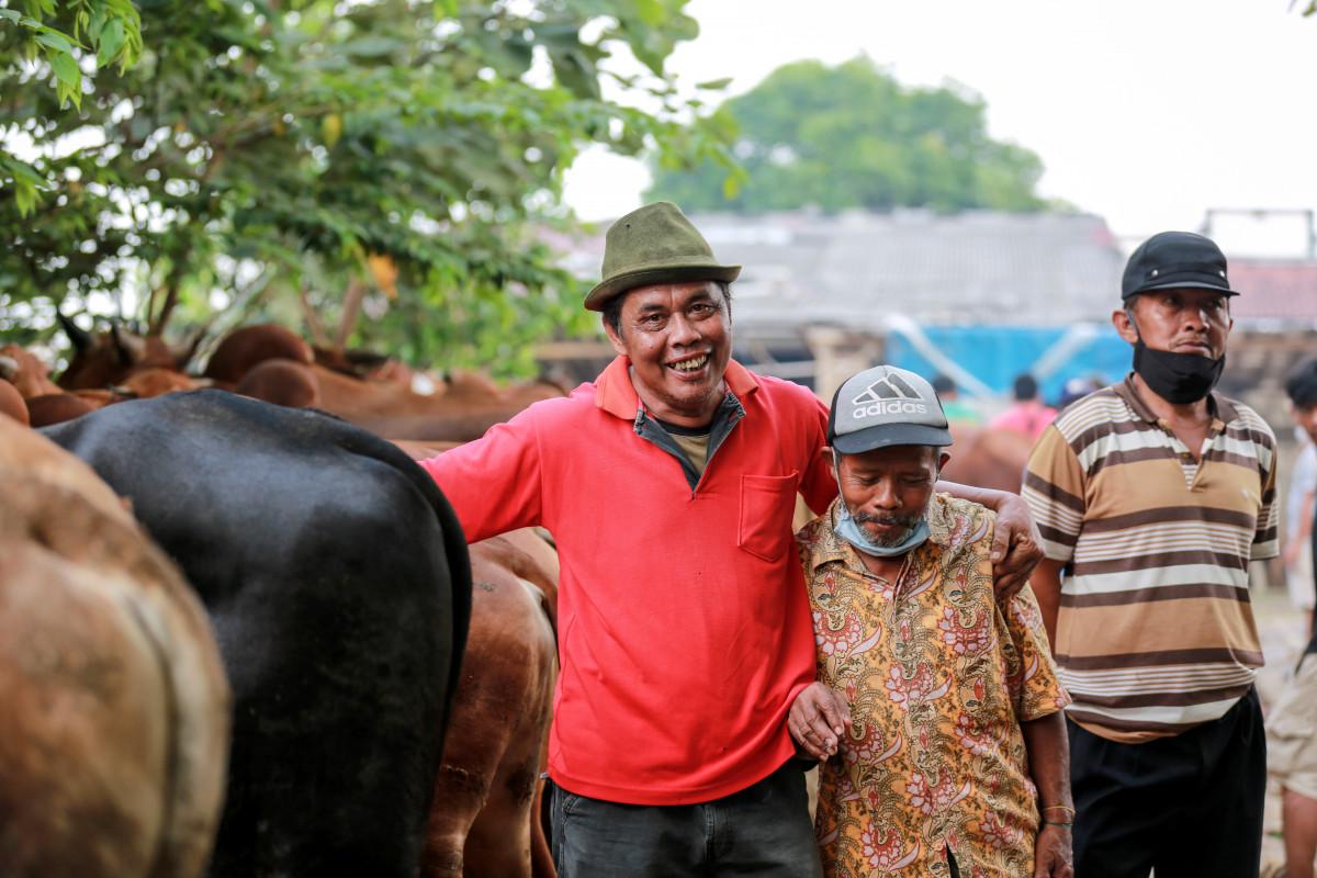 Marosok, Tradisi Tawar Menawar Ternak yang Gunakan Bahasa Isyarat di Minangkabau