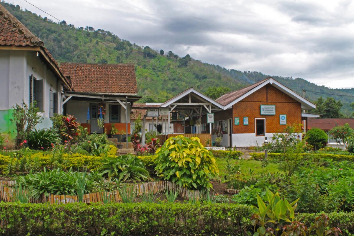 Berwisata ke Desa Jampit yang Menenangkan di Kaki Gunung Ijen