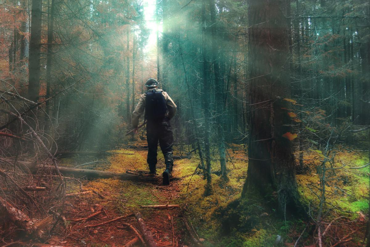 Apresiasi untuk Penjaga Hutan dalam Pengelolaan Sumber Daya Alam Indonesia