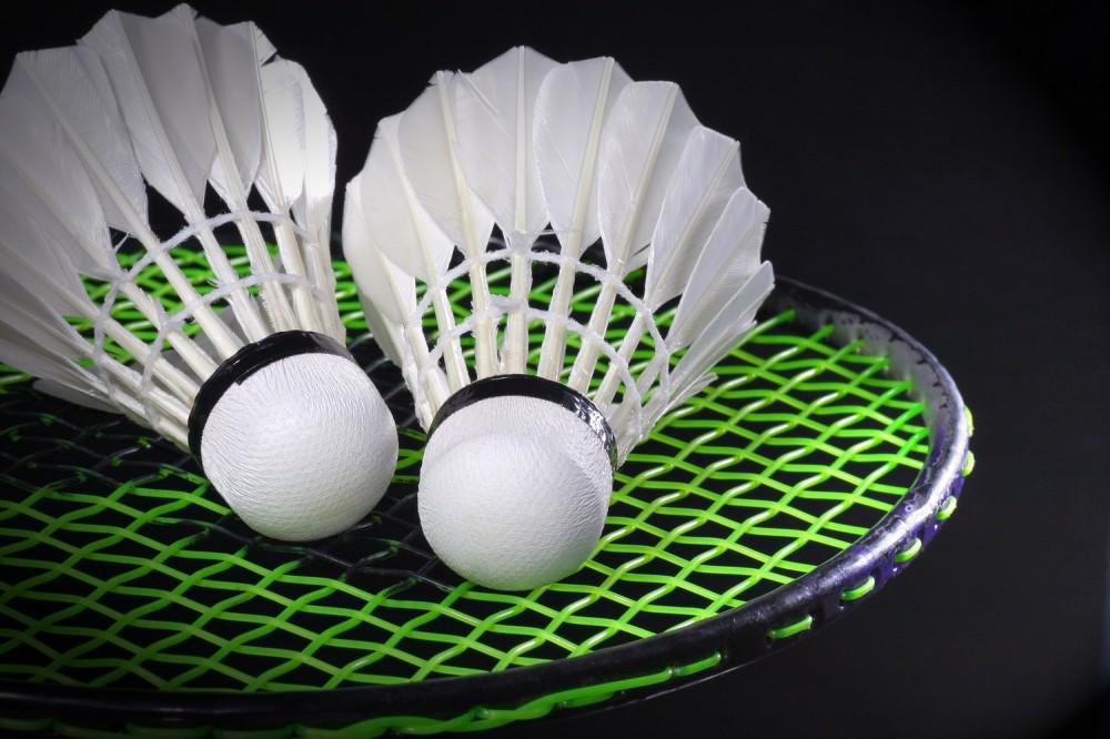 Takjub 5 Atlit Badminton Ini Raih 12 Gelar Super Series di 2017