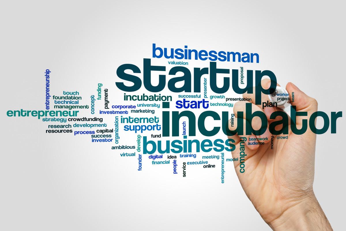 Penting Bagi Perusahaan Rintisan, Ini Deretan Inkubator Startup Ternama di Indonesia