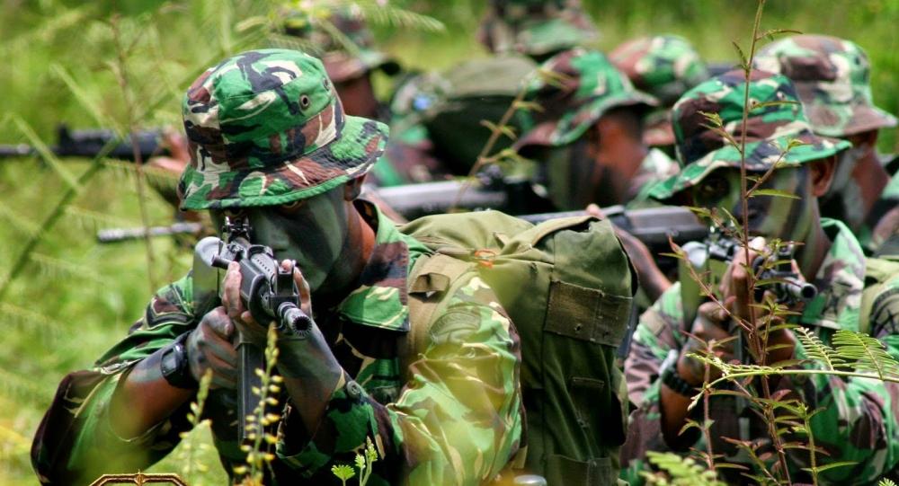 Kalahkan Israel, Brazil, Indonesia Masuk 15 Besar Kekuatan Militer Dunia