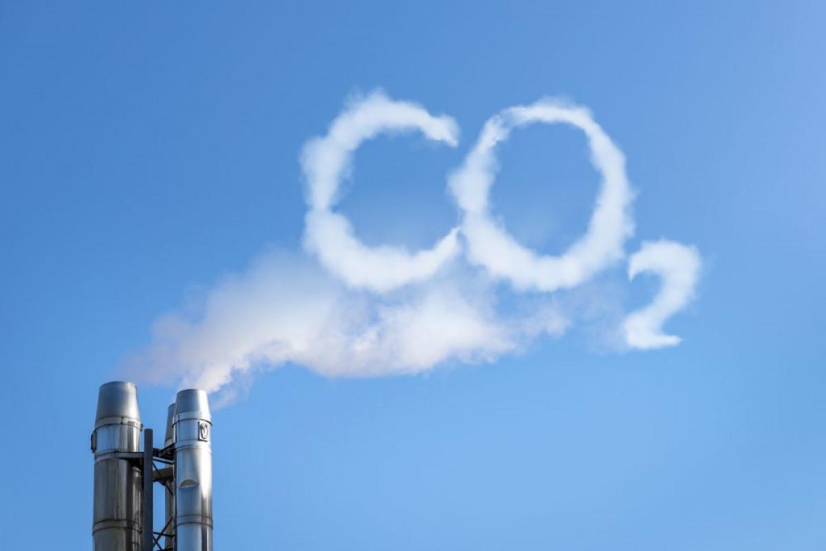 Penghargaan Norwegia untuk Indonesia yang Berhasil Turunkan Emisi Karbon