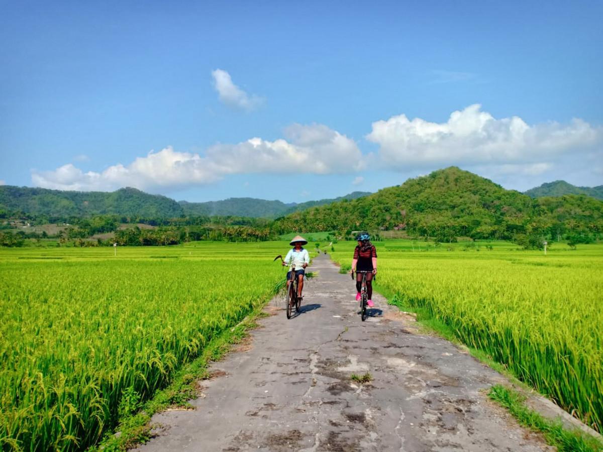 Ternyata Jogja Punya Cycling Tour dengan Konsep Sustainable Tourism!