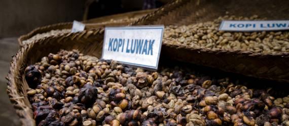 Ragam Kopi Nusantara Dikenalkan Kepada Peserta IMF-WBG 2018