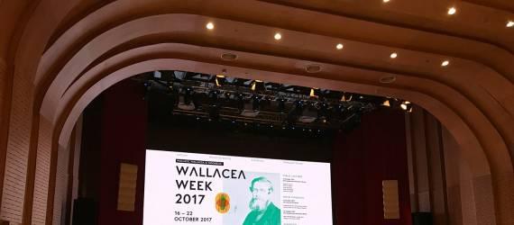Perayaan Keberagaman dan Sains di Pekan Wallacea 2018