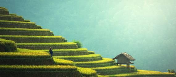 9 Alasan Mengapa Anda Lebih Baik Tidur di Rumah daripada Menjelajahi Indonesia