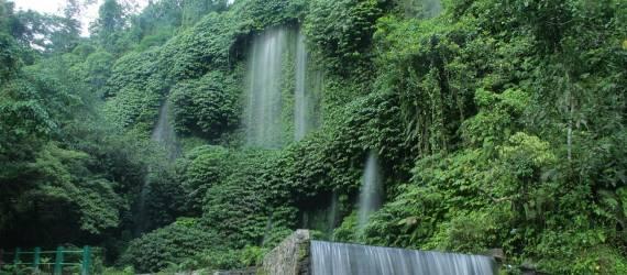 Desa Aik Berik, Hidup Warga dari Merawat Hutan