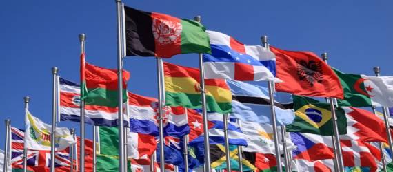 [Foto] Begini Penampakan Makanan Tradisional 18 Negara Dunia Disusun Seperti Bendera Negaranya