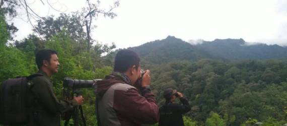 Konservasi di Era Digital: Citizen Science Untuk Konservasi Burung di Indonesia