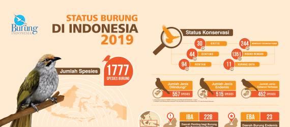 Tahun 2019, Jenis Burung di Indonesia Bertambah
