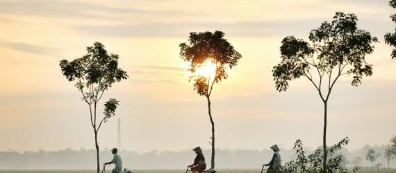 Melihat Ekonomi Dunia dalam Satu Gambar. Di Mana Posisi Indonesia?