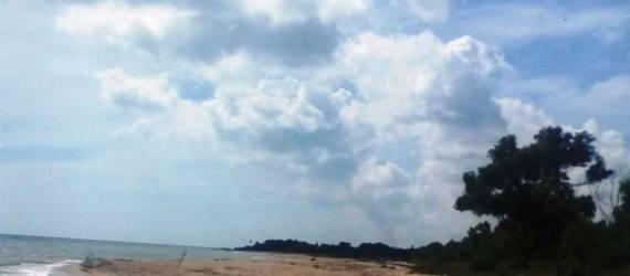 Pesona Alam Wisata Pantai dan Hutan Kera Nepa