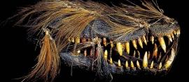 Suku Titisan Dewa di Tanah Papua