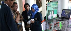 Mahasiswa UB Ciptakan Obat Diare untuk Kelinci