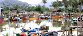Algeria Needs Indonesian Fishermans