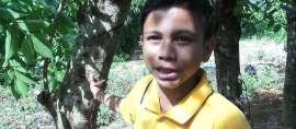 Pelajar Asal Aceh Berhasil Buat Sumber Listrik dari Pohon Kedondong