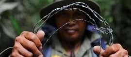 Menghancurkan Perangkap Satwa Liar di Leuser, Kawasan Konservasi Paling Penting di Muka Bumi