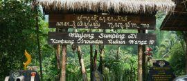 Kampung Adat Cireundeu, Kampung dengan Ketahanan Pangan yang Tinggi
