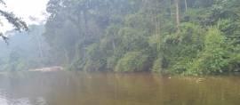 Lubuk Beringin, Inovasi Desa Mandiri Melalui  Ekowisata dan Keuangan Mikro