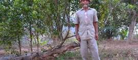 Sosok Pahlawan di Balik Hijaunya Gunung Gendol