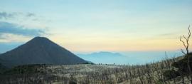 Hutan Mati Gunung Papandayan. Eksotis!