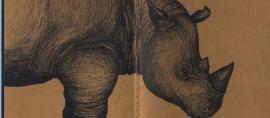 Indonesia Brings New Hope for Rhino