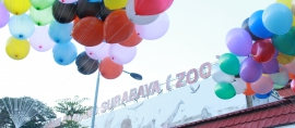 KBS adalah Kita, sebuah catatan menjelang #100thKBS