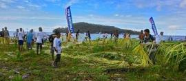 Khabar Indonesia di Negeri Tetangga