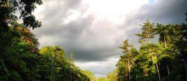 Mengintip Kuala Kencana, Kota Dengan Sistem Utilitas Bawah Tanah Pertama Di Indonesia