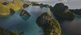 Papua Dinobatkan Sebagai Provinsi Konservasi Pertama di Indonesia