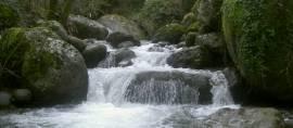 Manfaatkan Air, Desa-Desa di Flores Akhirnya Terang Benderang