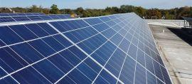 Mengenal Sekolah Energi Terbarukan dan Ramah Lingkungan di Semarang