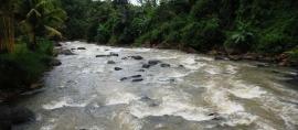 Sungai Citarik jadi Lokasi World Rafting Championship
