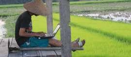 Wujudkan Ketahanan Pangan Nasional, Telkom Bangun Digitalisasi Pertanian