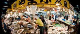 Udang Super dari Gorontalo yang Melanglang hingga Jepang