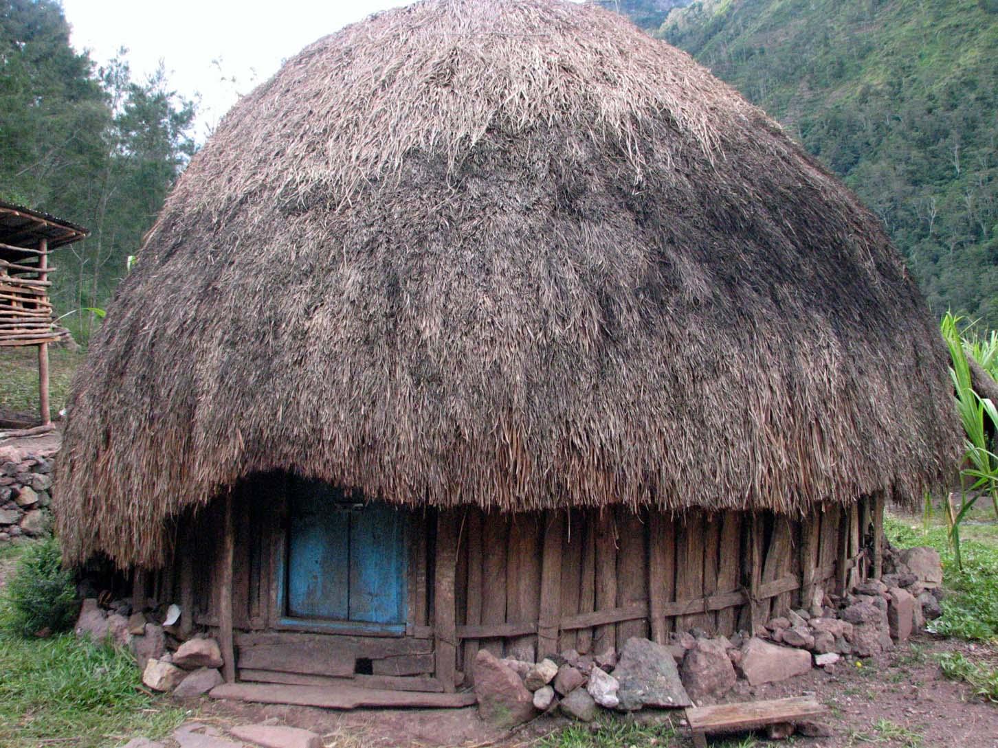 Rumah Honai