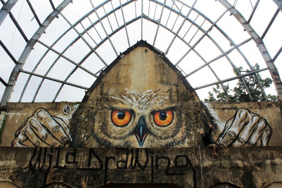 Owlself, WD (Foto: brightside.me)