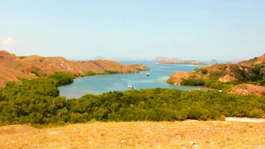 Loh Buaya tampak dari Ketinggian Pulau Rinca (Foto: Bagus DR / GNFI)