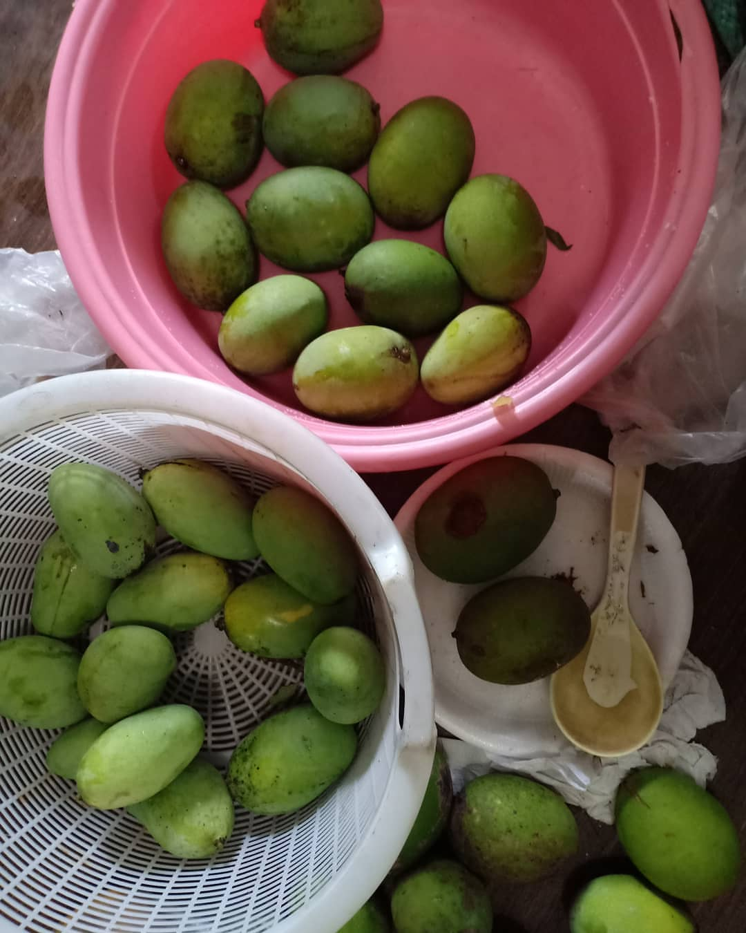 Buah Kuweni | Foto: picdeer.net