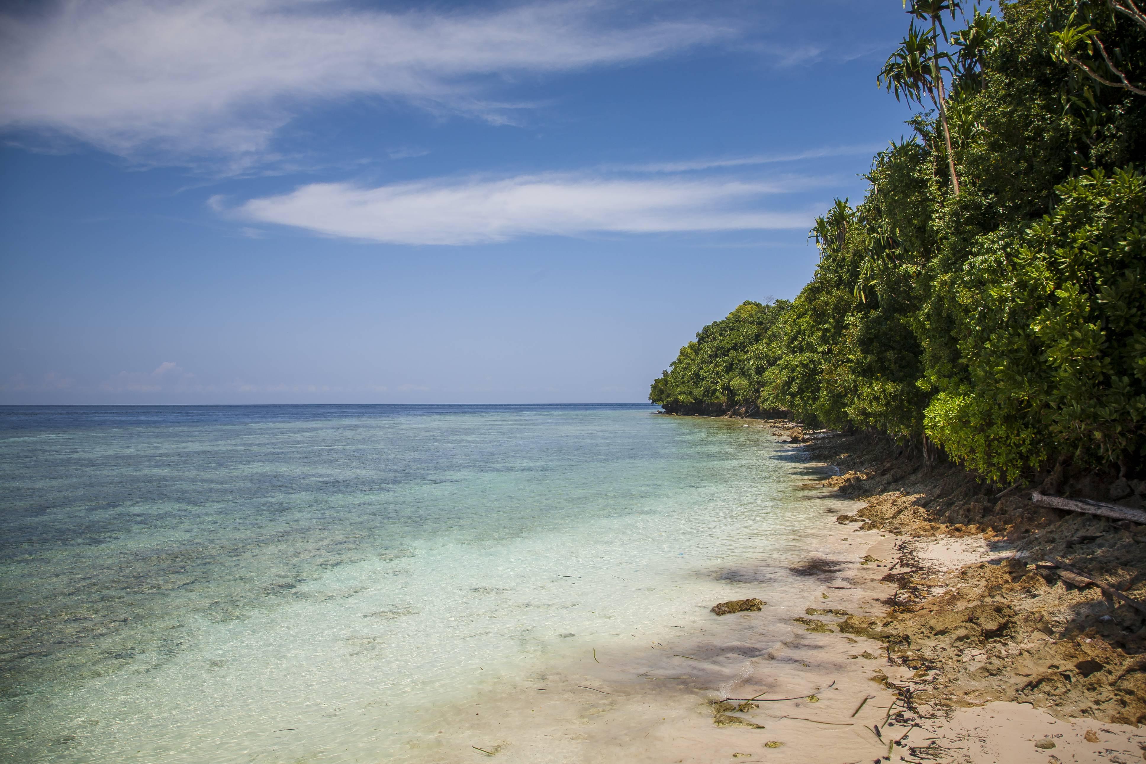 Pulau Kakaban tanpa bangunan   Foto: travellingyuk.com