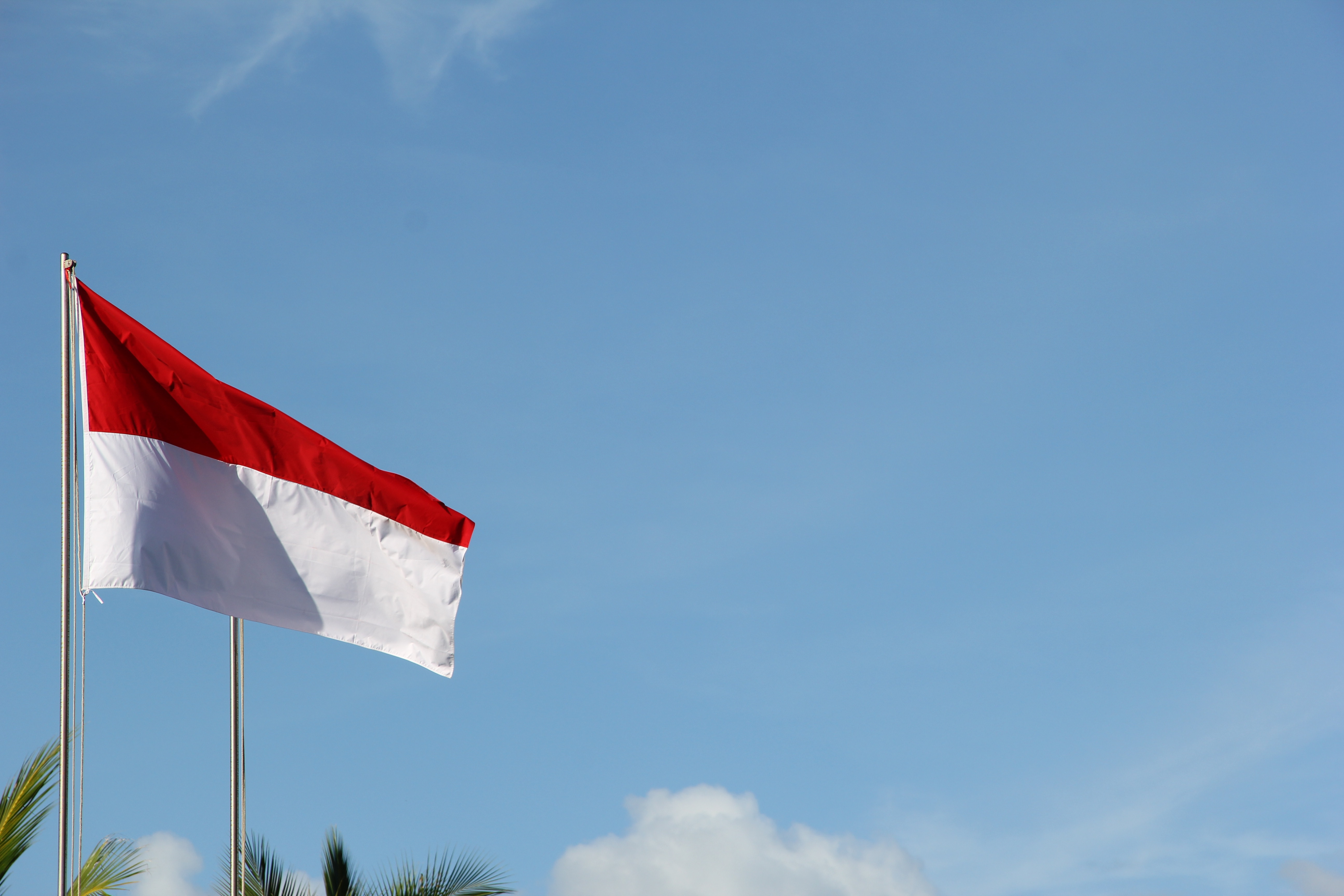 Bendera Indonesia | Foto: Nick Agus Arya/Unsplash