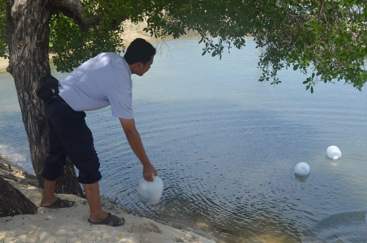 Inovasi Eddy Nurcahyono di bidang tambak dapat menjaga kelestarian rajungan dan kepiting   Foto: Kementerian PANRB