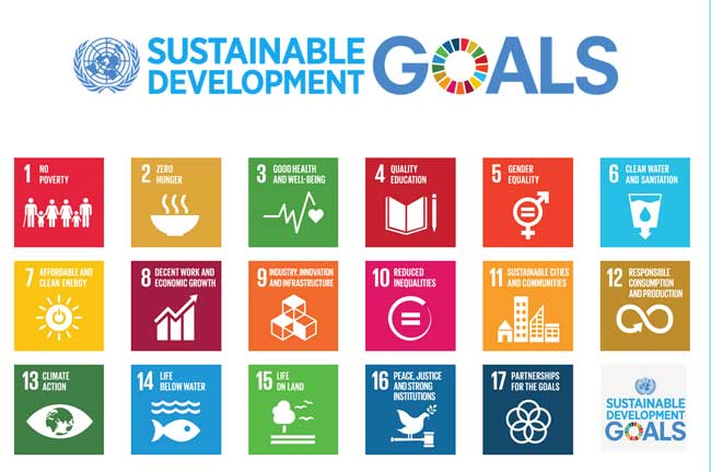 17 Goals SDGs (sumber : Caritas Internationalis)
