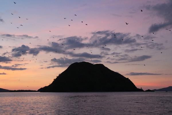 Pulau Koaba saat senja menjelang malam. Foto: Tiffany Roufs