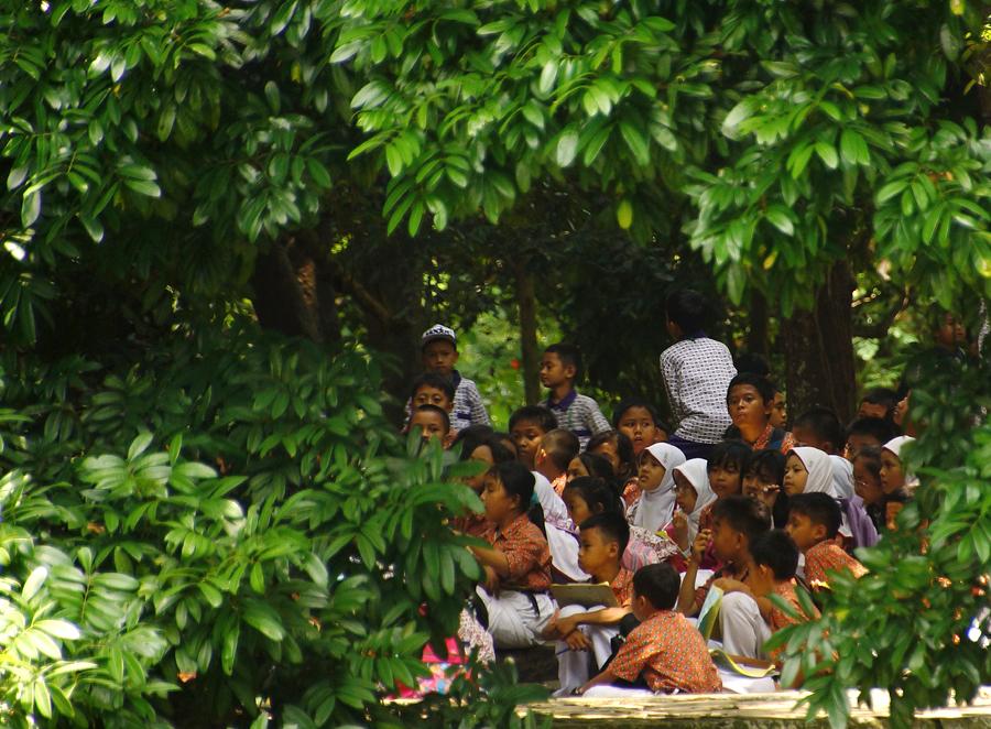 Anak-anak di Kebun Raya Bogor | Anton Wisuda
